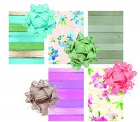 Brizzolari_Display-BriRex-GreenStyle-assortimento